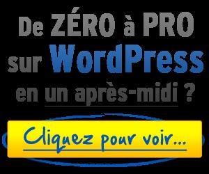 De 0 à Pro sur WordPress en 24H